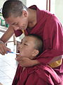 Senior monks taking care of junior monk - oral health promotion - Kopan Monastry.jpg