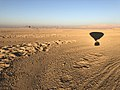 Shadow Of Hod Hod Soliman Balloon over Luxor , Egypt.jpg