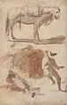 Sheet of Studies- A Horse Above, a Seated Man and a Reclining Man Below MET 64.136.7.jpg