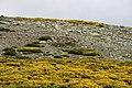 Sierra de Gredos 26-06-2010 16-33-43 3888x2592.jpg