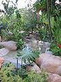 Singapore Botanic Gardens 5, Jul 06.JPG