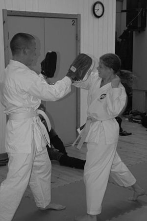 Exercises with kicking shield (?)