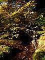 Slovakia autumn 19.JPG