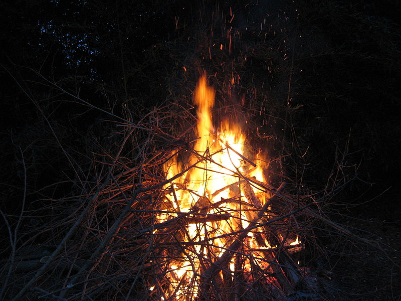 Small bonfire.JPG