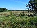 Smilyans'kyi district, Cherkas'ka oblast, Ukraine - panoramio (101).jpg