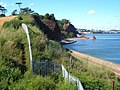 South West Coast Path at Shell Cove - geograph.org.uk - 199187.jpg