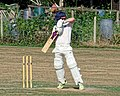 Southwater CC v. Chichester Priory Park CC at Southwater, West Sussex, England 051.jpg