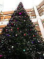 St Nicholas Centre christmas tree, SUTTON, Surrey, Greater London.jpg