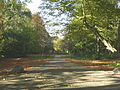 Stadtpark Wülfrath vom Süden aus MJ.JPG