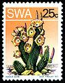 Stamp-hoodia-bainii-dick-findley-1973-web.jpg