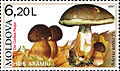Stamp of Moldova 014.jpg