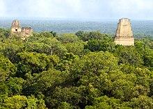 Le Parc national de Tikal, Guatemala