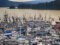 Statter Fish Armada Wiki 37.jpg