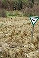 Staunasse-Lauchertaue Stetten-u-H Schwäbische Alb.jpg