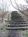 Steps, Oakbank Bing - geograph.org.uk - 325094.jpg