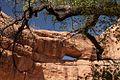 Stimper Arch - panoramio.jpg