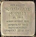 Stolperstein für Dr. Gustav Herzfeld (Potsdam).jpg