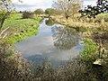 Stream south of Langport - geograph.org.uk - 1575486.jpg