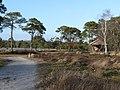 Strijbeekse Heide File96.jpg