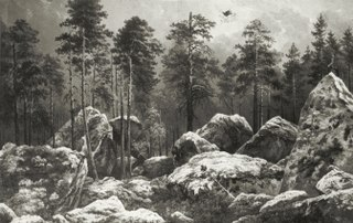 Study of a Forest at Hogdal