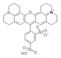 Sulforhodamine 101.png