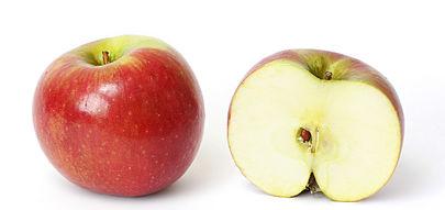 Mela wikipedia - Immagini stampabili di mele ...
