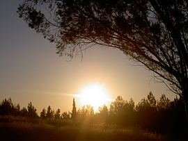 Sunsetinisrael.jpg