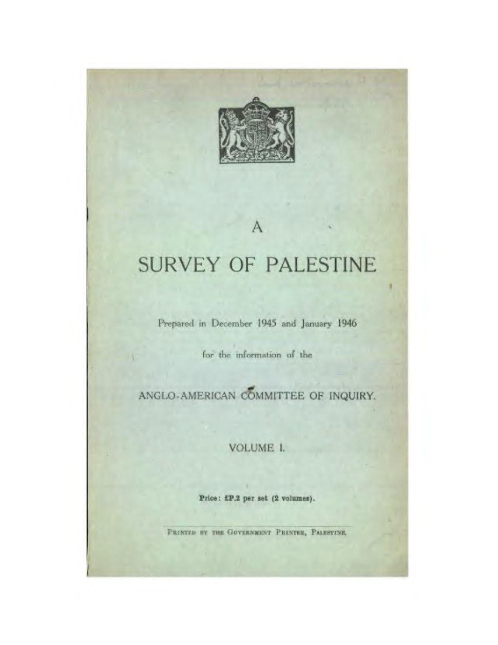 Survey of Palestine Volume I full document.djvu