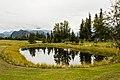 Sutton, Alaska, Estados Unidos, 2017-08-22, DD 73.jpg