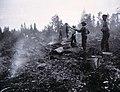 Svedjelandsbränning. Elden har gått ut, och mycket folk har samlats för att begränsa den - Nordiska museet - NMA.0033791.jpg
