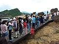 TW 台灣 Taiwan 新台北 New Taipei 萬里區 Wenli District 野柳地質公園 Yehli Geopark August 2019 SSG 127.jpg