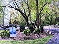 Tara - Leeway Heights, Arlington, VA 22205, USA - panoramio (1).jpg