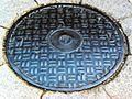Telephone.manhole.cover.in.tokyo.city.jpg