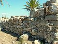 Tell Megiddo Preservation 2009 019.JPG