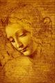 Testa di Fanciulla detta La... - Leonardo da Vinci.png