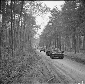 Seaforth Highlanders - Universal Carriers of the 2nd Battalion, Seaforth Highlanders during Operation Veritable in the Reichswald forest, Germany, 10 February 1945.