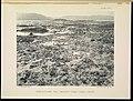 The Great Barrier Reef of Australia (PLATE XVIII) (6898564336).jpg