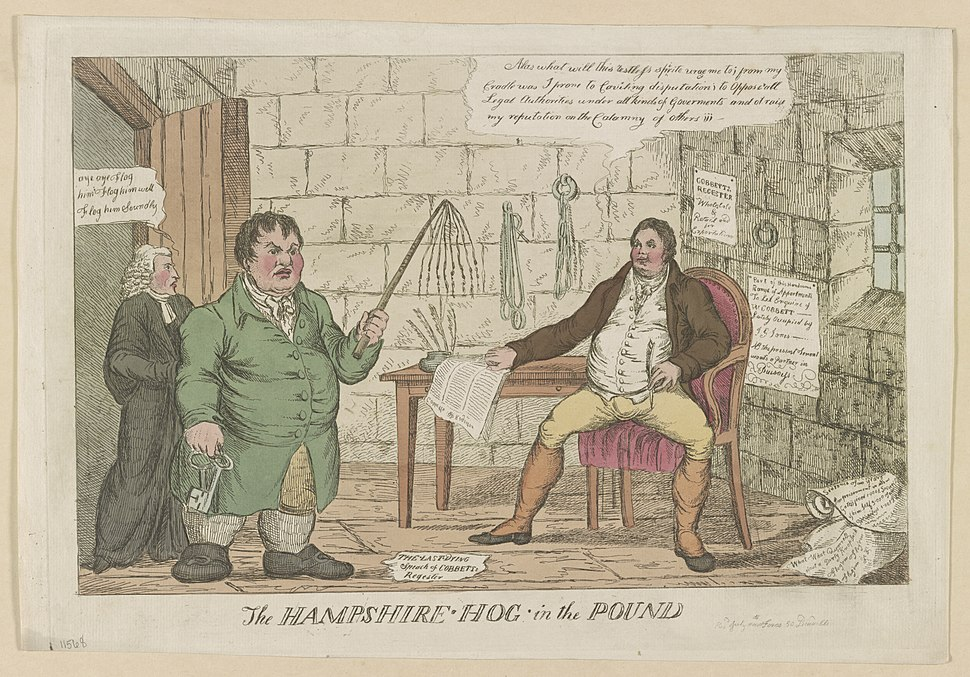 The Hampshire hog in the pound LOC ds.10846