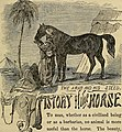 The horse and his diseases; (1860) (14581030619).jpg
