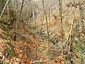 The ravine of Roaring Brook Falls. - panoramio.jpg