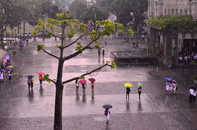 File:The walking in the rain.JPG