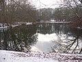 Tiergarten - Neuer See - geo.hlipp.de - 31916.jpg