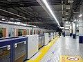 Tobu Kawagoe platform screen doors-2.jpg