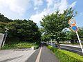 Toriyamacho, Kohoku Ward, Yokohama, Kanagawa Prefecture 222-0035, Japan - panoramio (3).jpg