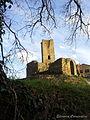Torre Carpignano.jpg