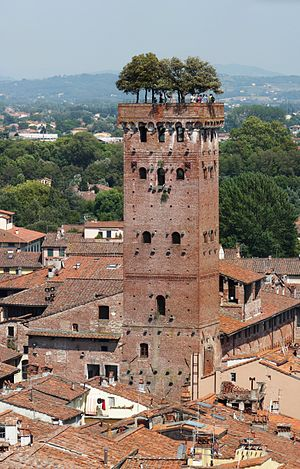 English: Torre Guinigi - Medieval tower in Luc...