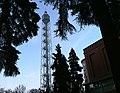Torre branca.jpg