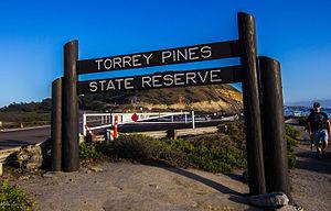Torrey Pines State Natural Reserve - Torrey Pines Park