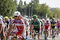Tour de France 2013 - Étape 12 - Fougères 03.JPG