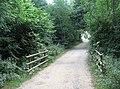 Track - Bucklebury Farm Park - geograph.org.uk - 982406.jpg